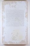 Michael Carini Arts Suicide Note